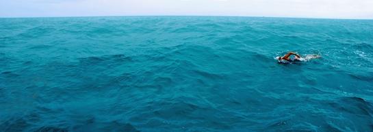 finalopenwaterswimphoto