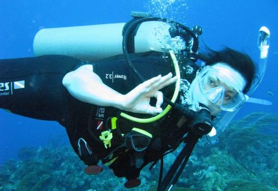 Jan dives